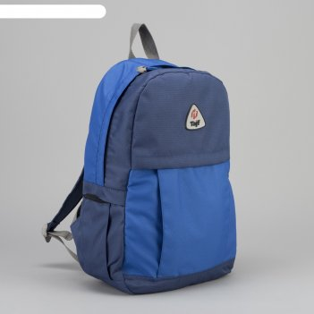 Рюкзак туристический, 21 л, отдел на молнии, наружный карман, цвет синий/в