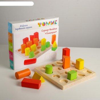 Логический игровой набор «сортер-вкладыш. геометрия» 17 деталей