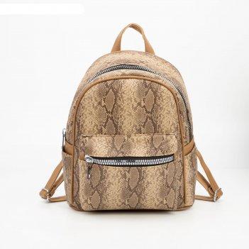 Рюкзак, отдел на молнии, 3 наружных кармана, цвет коричневый