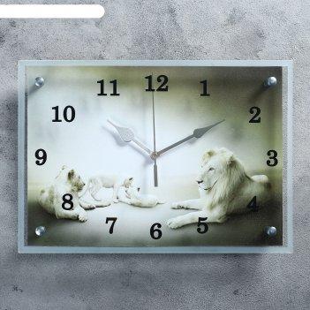 Часы настенные, серия: животный мир, белые львы25х35см