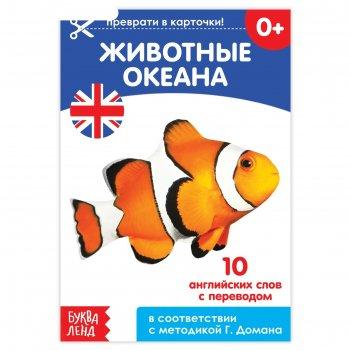 Обучающая книга по методике г. домана «животные океана. английский язык»,
