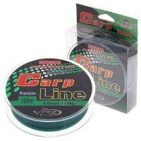 Леска капрон carp line темно-зеленая d=0,4 мм, 100 м, 13 кг