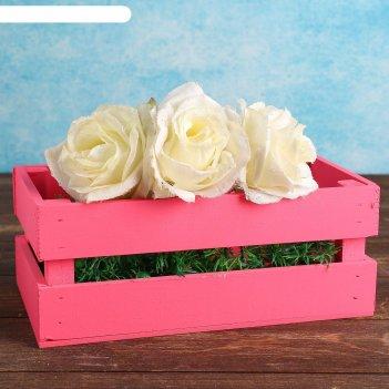 Ящик-кашпо двушка, большой, розовое, 24,5х13,5х9см