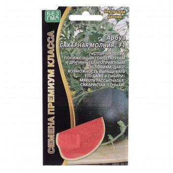Семена семена арбуз сахарная молния, f1,  6 шт