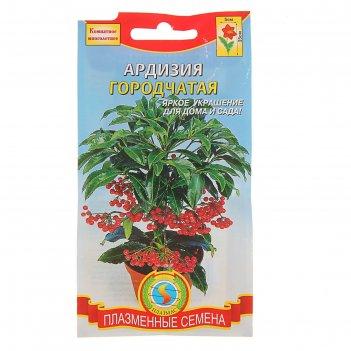 Семена комнатных цветов ардизия городчатая, мн., 3 шт