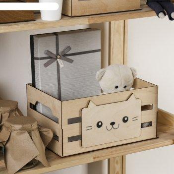 Ящик для хранения кот 300 х 150 х 200 мм
