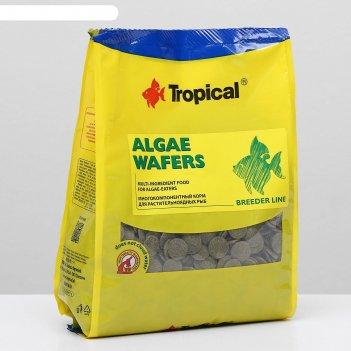 Корм для растительноядных рыб algae waffers в виде тонущих чипосв, 1 кг