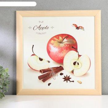 Постер дерево фруктовая коллекция. яблоки с корицей 35х35 см, ясень