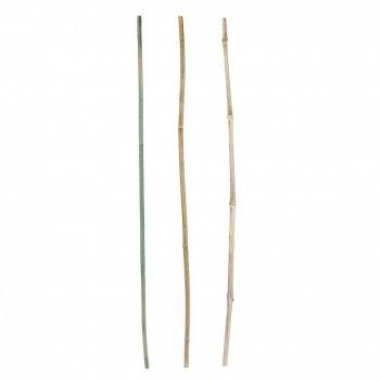 Опора декоративная для растений d=0,7см. h=60см. (3вида) (бамбук обработан
