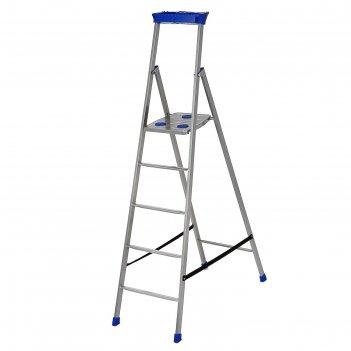 Стремянка металлическая, 5 ступеней, высота до платформы 106,5 см
