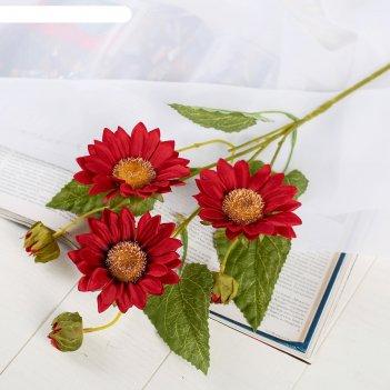 Цветы искусственные гербера флора кустовая 9*60 см, бордовый