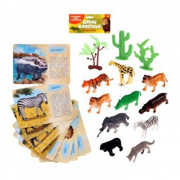 Набор животных с обучающими карточками «дикие животные разных стран», 10 ж