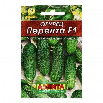 Семена огурец перента f1, 10 шт