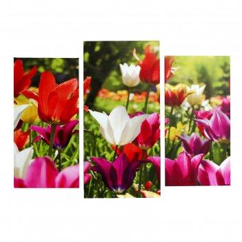 Картина модульная солнечные тюльпаны 2шт-25х50, 1шт-30х60 ;60*80 см