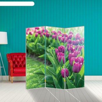Ширма тюльпаны. декор 12 150 x 160 см