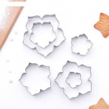 Набор форм для вырезания «лепестки петуньи», 7,5x7 см, 6 шт