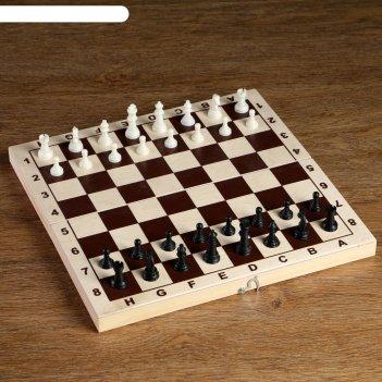 Фигуры шахматные пластиковые  (король h=4.2 см, пешка 2.см)