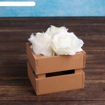 Ящик-кашпо двушка, сердний, коричневое, 11х12х9см