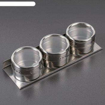 Набор для специй «магнит», 6x4 см , 3 шт