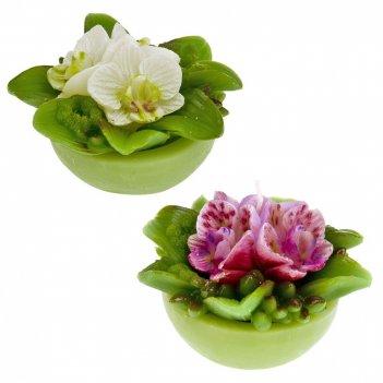 Свеча декоративная орхидея 10*10*8см. (2вида) (min6) (парафин) (упаковочны
