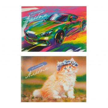 Альбом для рисования а4, 16 листов на скрепке, обложка картон 240 г/м2, бл