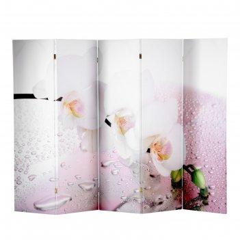 Ширма орхидея и капли воды, 250 x 160см