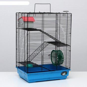 Клетка для грызунов пижон №5, с 3 этажами, укомплектованная, 41 х 30 х 58