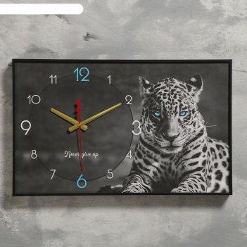 Часы настенные, серия: природа, леопард, 1 аа, плавный ход, 37х60 см
