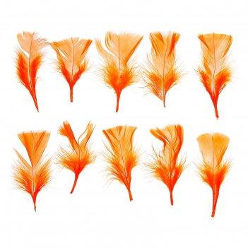 Набор перьев для декора 10 шт., размер 1 шт: 10 x 4 см, цвет оранжевый
