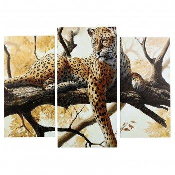 Картина модульная на подрамнике гепард на отдыхе (2-25х50, 30х60 см) 80х60