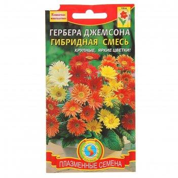 Семена комнатных растений гербера джемсона, гибридная смесь, мн., 10 шт
