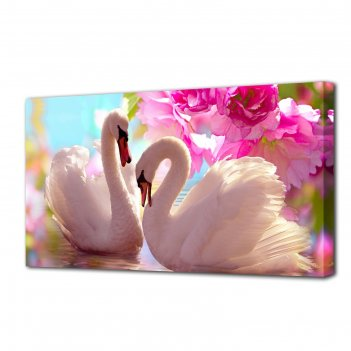 Картина на холсте лебеди в розовых цветах 50х100 см