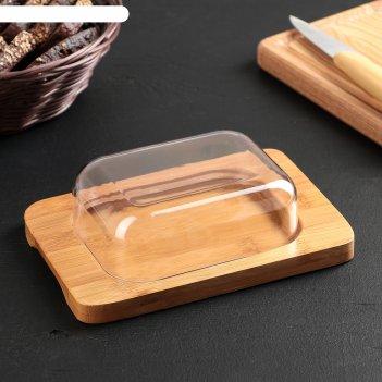 Масленка-сырница бамбуковый лес 19х13х5 см