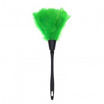 Метла горничной, цвет зеленый