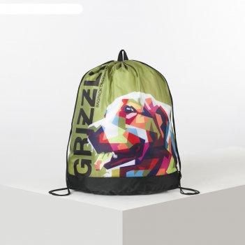 Мешок для обуви 500*380 grizzly om-91 дев салатовый