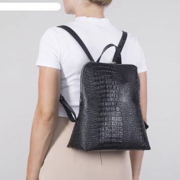 Рюкзак молодежный 407, 26*13*30, отд на молнии, н/карман, черный