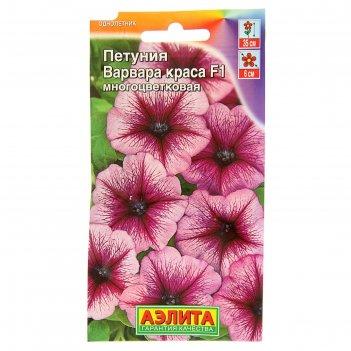 Семена цветов петуния варвара краса f1 многоцветковая, о, 10 шт
