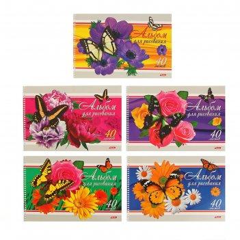 Альбом для рисования а4, 40 листов на гребне бабочки с цветами, блок офсет