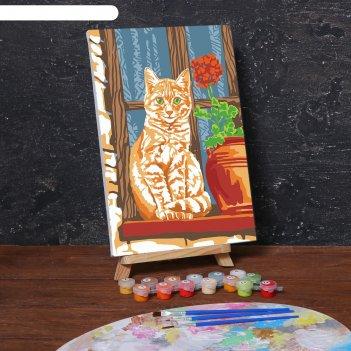 Картина по номерам на холсте с подрамником «рыжий кот» 20х30 см