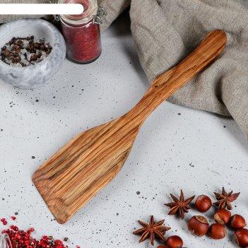 Лопатка дубовая косая, 30 см