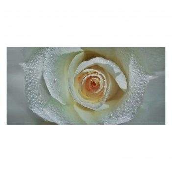 Картина на холсте белый бутон 50х100 см