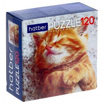 Пазл 120 эл. котиков много не бывает 120пз5_19065
