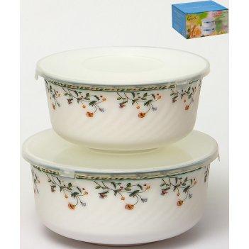Набор салатников с крышками 2 «лиция», 2 предмета