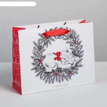 Пакет подарочный ламинированный горизонтальный «новогодний котенок», ms 23