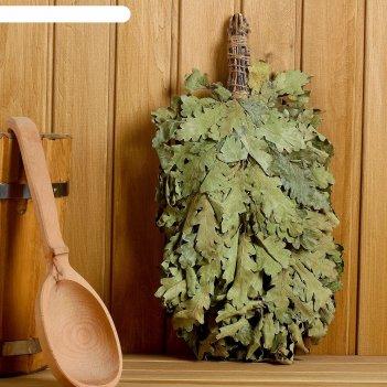 Веник для бани выгодный из кавказского дуба, промо