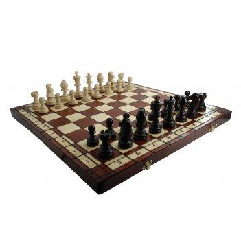 Шахматы tournament №8 (турнирные 8) король 10см, доска береза 55х55см