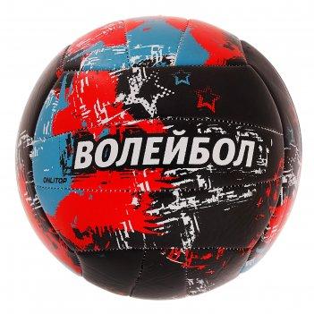 Мяч волейбольный aсе, размер 5, 18 панелей, pvc, 2 подслоя, машинная сшивк