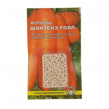 Семена морковь шантенэ ройал простое драже
