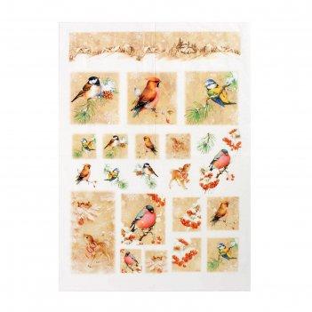 Карта для декупажа птицы