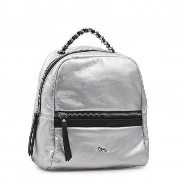 Рюкзак, отдел на молнии, цвет серебристый